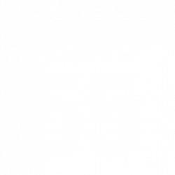 Road 55 – A Growth Agency